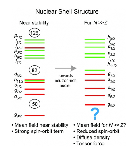 Nuclear Shell Structure
