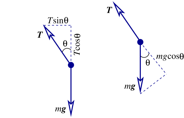 Geometry of the forces acting on the simple pendulum