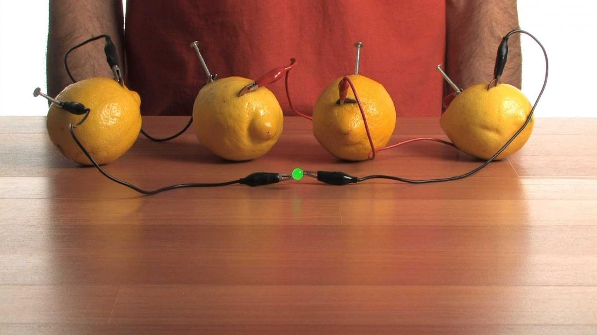fruit power battery with lemons