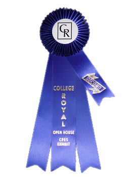 Second Place Prize Ribbon